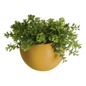PT wall plant pot globe PT3382YE